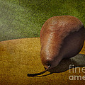 Sunlit Pear by Susan Candelario