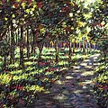 Sunlit Trees by John  Nolan