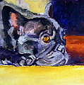 Sunny Patch French Bulldog by Lyn Cook