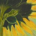 Sunny Side Up by Cori Solomon