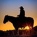 Sunrise Cowboy by Inge Johnsson