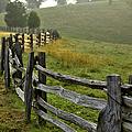 Sunrise Meadow - Blue Ridge Parkway I by Dan Carmichael