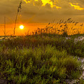 Sunset Dunes by Marvin Spates