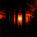 Sunset Silhouette Painterly by Andee Design