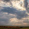 Sunshine And Hay Bales by Scott Bean
