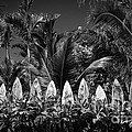 Surf Board Fence Maui Hawaii Black And White by Edward Fielding