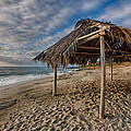 Surf Shack by Peter Tellone