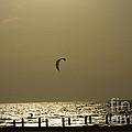 Surfing At Sunset 02 by Arik Baltinester