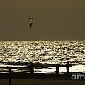 Surfing At Sunset by Arik Baltinester