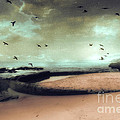 Surreal Dreamy Ocean Beach Birds Sky Nature by Kathy Fornal