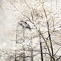 Surreal Dreamy Winter White Church Trees by Kathy Fornal
