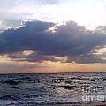 Swim Before Storm by Patrick Mancini