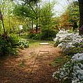 Swing In The Garden by Sandy Keeton