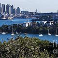 Sydney Harbour by Steven Ralser