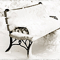 Take A Seat  And Chill Out - Park Bench - Winter - Snow Storm Bw by Andee Design