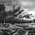 Taking Flight  by Peter Piatt