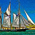 Tall Ship paint  Print by Steve Harrington