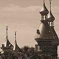 Tampa Minarets  by Carol Groenen