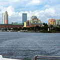 Tampa Skyline from the Bay