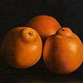 Tangerines by Anthony Enyedy
