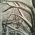 Tangle by Erik Coryell