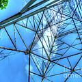 Tangled Web by MJ Olsen