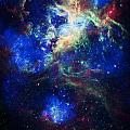 Tarantula Nebula 5 by Jennifer Rondinelli Reilly - Fine Art Photography