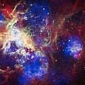 Tarantula Nebula 6  by Jennifer Rondinelli Reilly - Fine Art Photography
