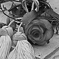 Tassels And Roses Be...