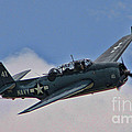 Tbm-3 Avenger by Tommy Anderson