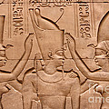 Temple Of Horus Relief by Stephen & Donna O'Meara