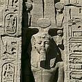 Temple Of Nefertari Dedicated by Everett