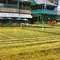 Tennis Hall Of Fame - Newport Rhode Island by Michelle Calkins