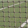 Tennis Net by Luis Alvarenga