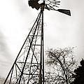 Texas Windmill by Marilyn Hunt