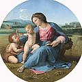 The Alba Madonna by Raffaello Sanzio of Urbino