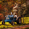 The Autumn Blues by Debra and Dave Vanderlaan