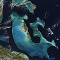 The Bahamas by Adam Romanowicz