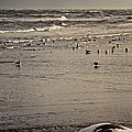 The Beach Is Ours by Odd Jeppesen