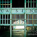 The Casino by Colleen Kammerer