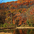 The Color Of Fall by Billy Beasley