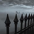 The Dark Night by Jennifer Grover