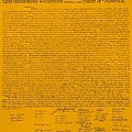 The Declaration Of Independence In Orange by Rob Hans