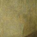 The Dog by Goya