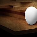 The Egg by Tom Mc Nemar