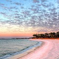 The Emerald Coast by JC Findley