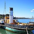 The Eppleton Hall Paddlewheel Tugboat - 1914 by Daniel Hagerman