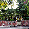 The Ernest Hemingway House - Key West by Bill Cannon