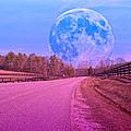 The Evening Begins by Betsy C Knapp