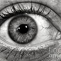 The Eye by Luke Moore